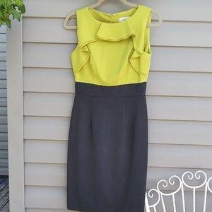 Calvin Klein Dress (size 2)